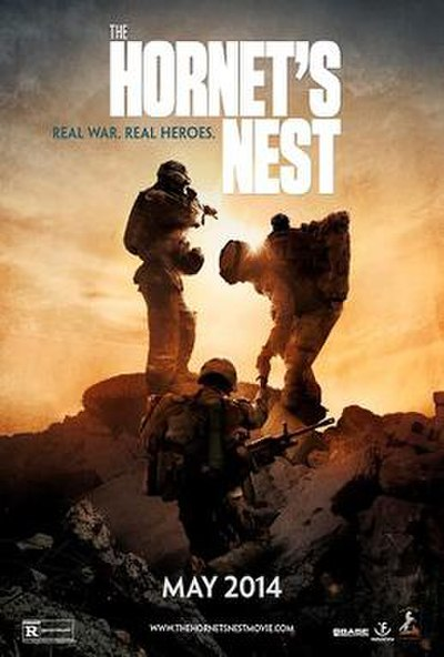 Picture of a movie: The Hornet's Nest