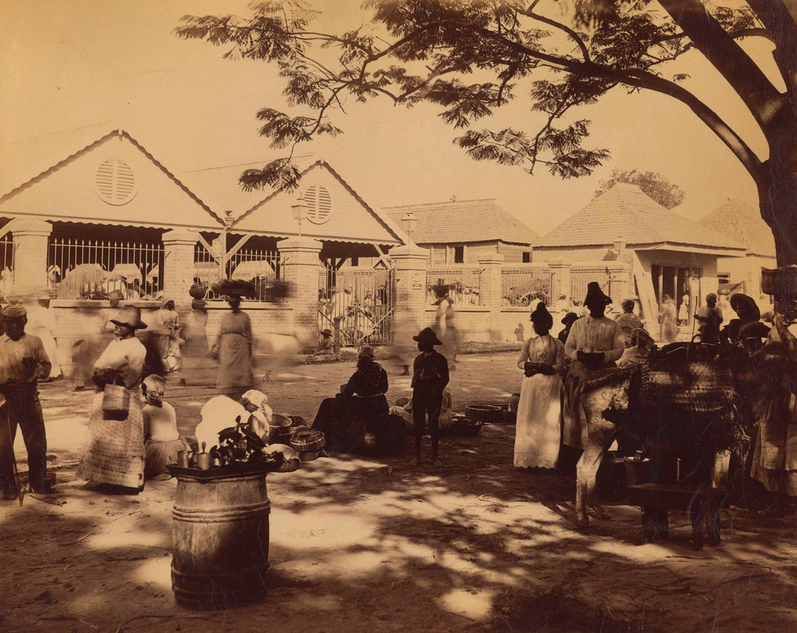 Valentine and Sons - Street View 3, Kingston, Jamaica, 1891.tiff
