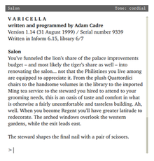 Varicella computer game screenshot.png