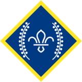 The Chief Scout's Platinum award badge