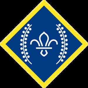 Explorer Scouts (The Scout Association) - Chief Scout Platinum Award (Explorer Scouts or Scout Network)