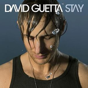 Stay (David Guetta song) - Image: David Guetta Stay