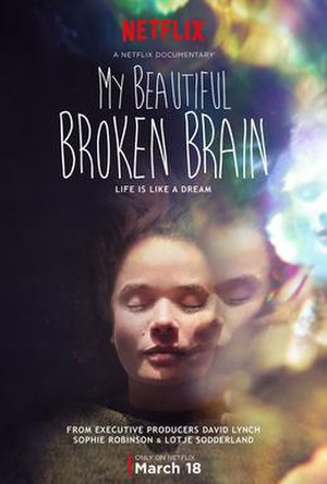 My Beautiful Broken Brain - Netflix poster of My Beautiful Broken Brain