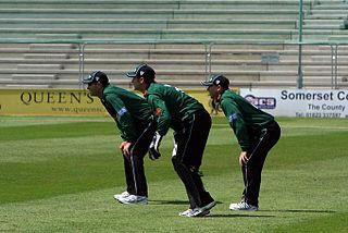 Steven Davies English cricketer
