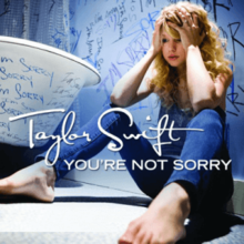 Taylor Swift   You\'re Not Sorry (Rock Remix)