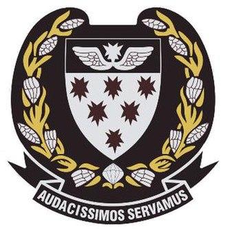 7 Medical Battalion Group - Image: 7 Med Bn Gp Flash plus Logo