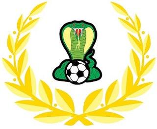 Adelaide Cobras FC Football club