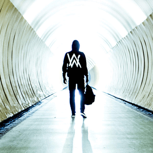 Faded (Alan Walker song) - Image: Alan Walker Faded