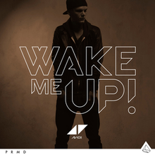 Avicii Wake Me Up Album Cover