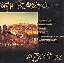 How Can We Sleep When Our Beds Are Burning Lyrics