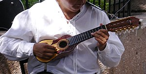 Military dictatorship of Chile (1973–90) - Charango, a musical instrument banned by the dictatorship.