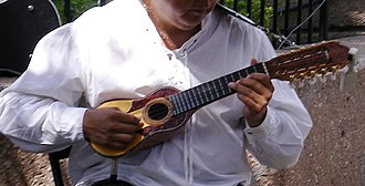 Charango - A charango player.