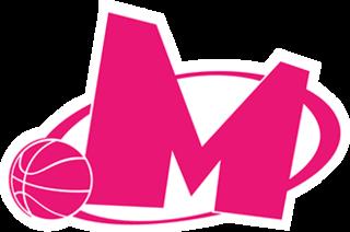 KK Mega Basket Basketball club in Belgrade, Serbia