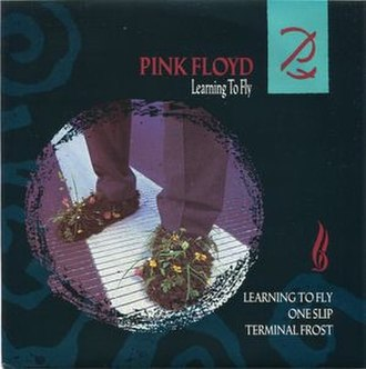Learning to Fly (Pink Floyd song) - Image: Pink Floyd Learning to Fly