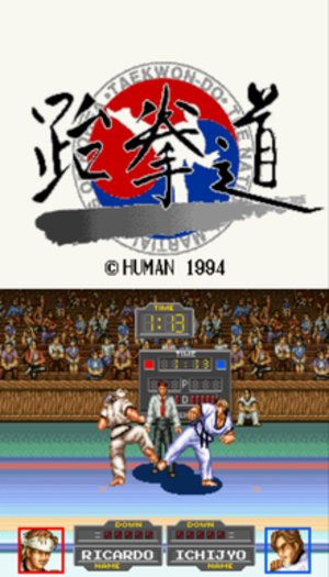 Taekwon-Do (video game) - Title screen the gameplay.