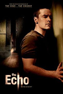 The Echo (2008 film)