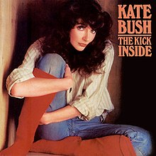 Image result for KATE BUSH THE KICK INSIDE