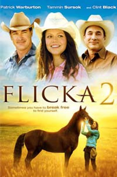 Picture of a movie: Flicka 2