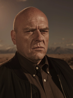 Hank Schrader Fictional character in the television drama series Breaking Bad