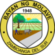 Official seal of Molave