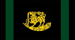 Sri Lanka Sinha Regiment - Image: SLA Sinh R flag