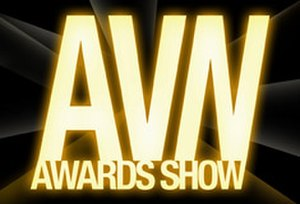 24th AVN Awards - Image: 2007 AVN Awards Show Logo