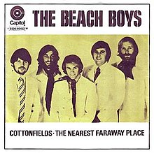 Beach Boys - Cottonfields.jpg