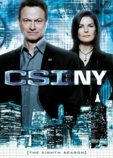 <i>CSI: NY</i> (season 8) season of television series