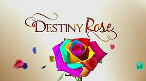 Destiny Rose - Image: Destiny Rose title card