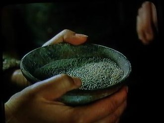 Magical objects in Harry Potter - Floo Powder as seen in Chris Columbus' film adaptation of Harry Potter and the Chamber of Secrets.