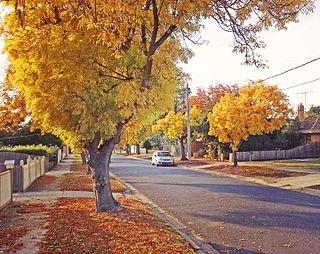 Hamlyn Heights, Victoria Suburb of Geelong, Victoria, Australia