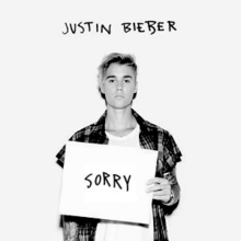 Justin Bieber Sorry Official Single Cover Png