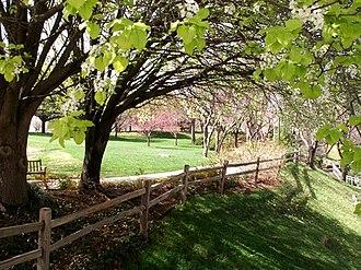 Neighborhoods of Oklahoma City - The Myriad Gardens.