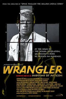 Wrangler-anatomy-of-an-icon.jpg