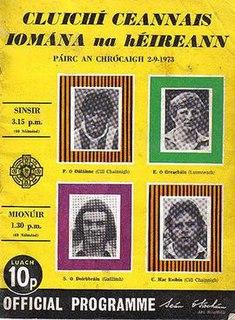1973 All-Ireland Senior Hurling Championship Final