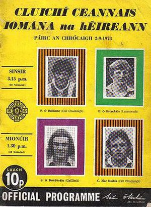 1973 All-Ireland Senior Hurling Championship Final - Image: 1973 All Ireland hurling final programme