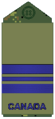 Air Force olive Maj.png