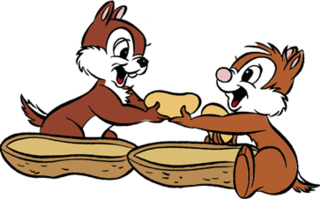 Chip n Dale Disney cartoon characters
