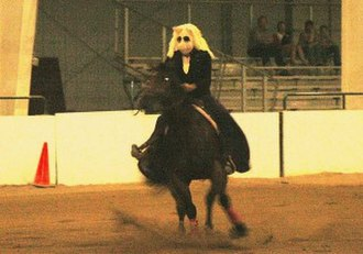 Reining - A competitor in Freestyle reining, dressed as Miss Piggy