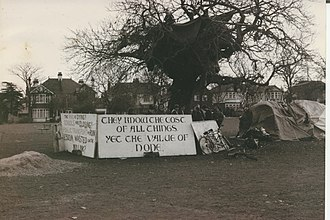 M11 link road protest - The chestnut tree on George Green, Wanstead became a focal point and a symbol for anti-M11 Link Road protesters.