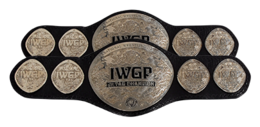 IWGP Junior Heavyweight Tag Team Championship.PNG