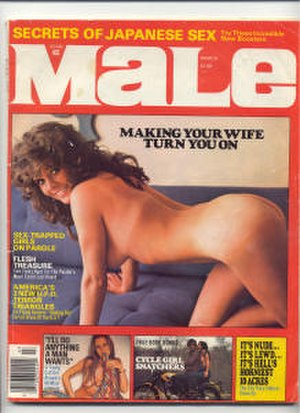 Magazine Management - Image: Male vol 26n 3 1976