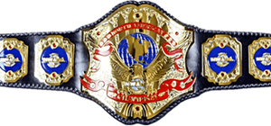 NWA North American Heavyweight Championship - The current NWA North American Heavyweight Championship belt.