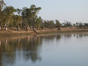 Fitzroy River (Western Australia) - Sandy Billabong, near Yungngora community
