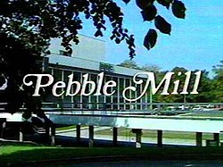 Pebble Mill at One titles.jpg
