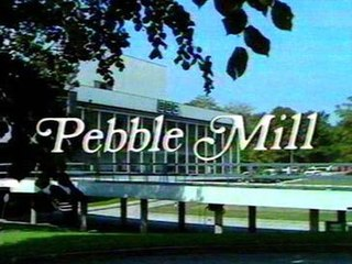 <i>Pebble Mill at One</i> television series