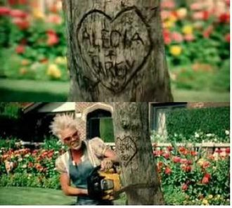 So What (Pink song) - A split screenshot showing a love heart carved on a tree with Pink's legal name and the name of her then-estranged husband. The second shows Pink cutting down the tree. The carving was saved and is now a feature in the couple's house.