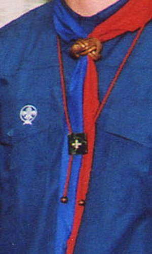 Chief Scout Award (Scouting Ireland) - A member wearing the CSI Chief Scout's Award. It does not bear the World Crest, meaning it was awarded before January 1, 2004