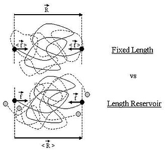 Ideal chain - Image: Ideal chain fixed reservoir corrected 2