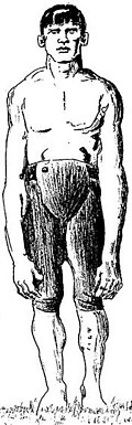 A sketch showing Donnelly's arms reaching to his knees